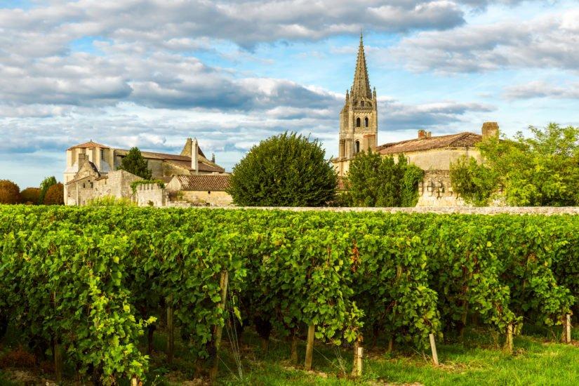 Vignes de Saint Emilion