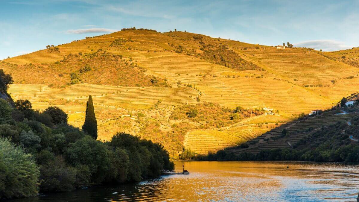 Vallée du Douro, Visite guidée en français de la Vallée du Douro avec Jorge